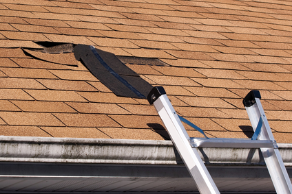 Mighty Hands Roofing Inc image 2