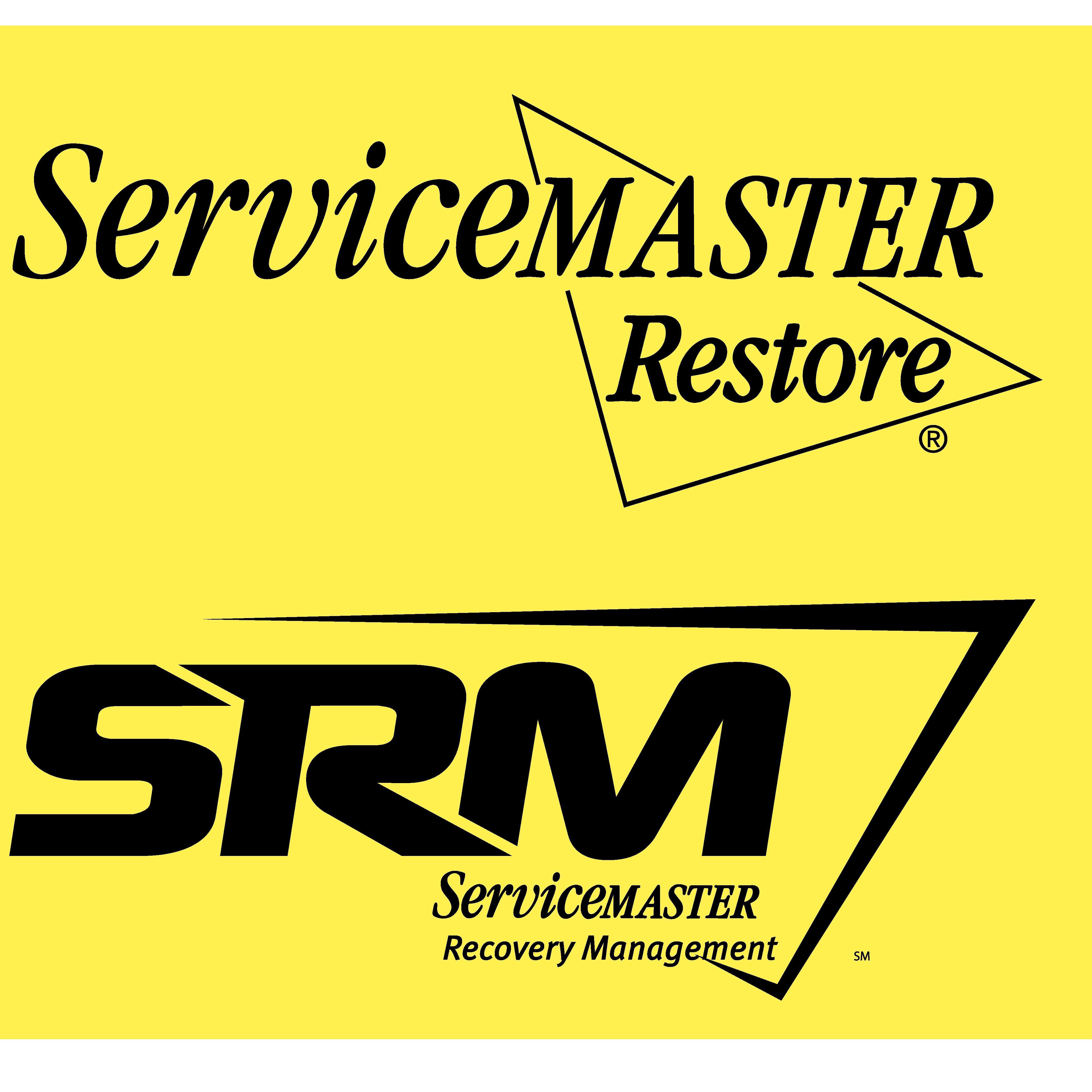 ServiceMaster DSI image 7