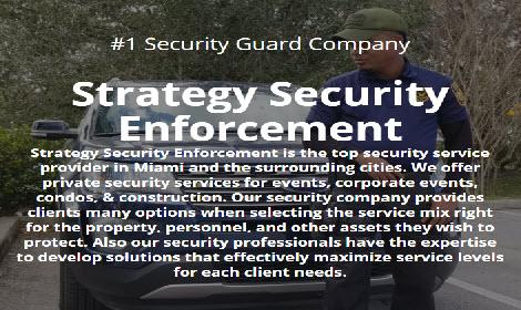 Strategy Security Enforcement Inc. image 0