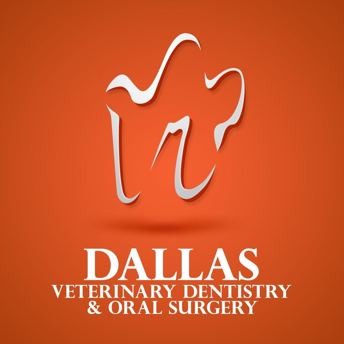 Dallas Veterinary Dentistry & Oral Surgery