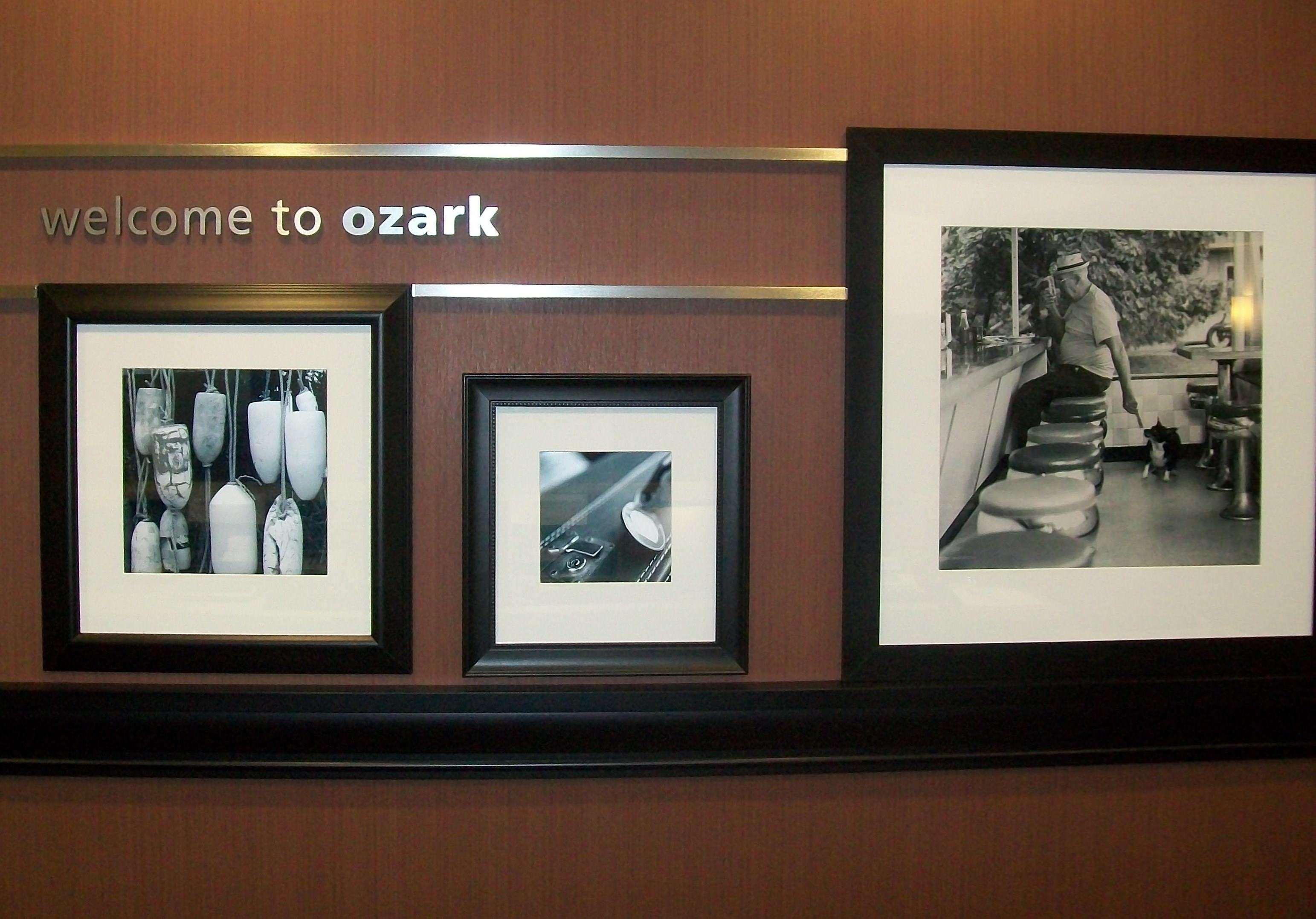 Hampton Inn Ozark image 3