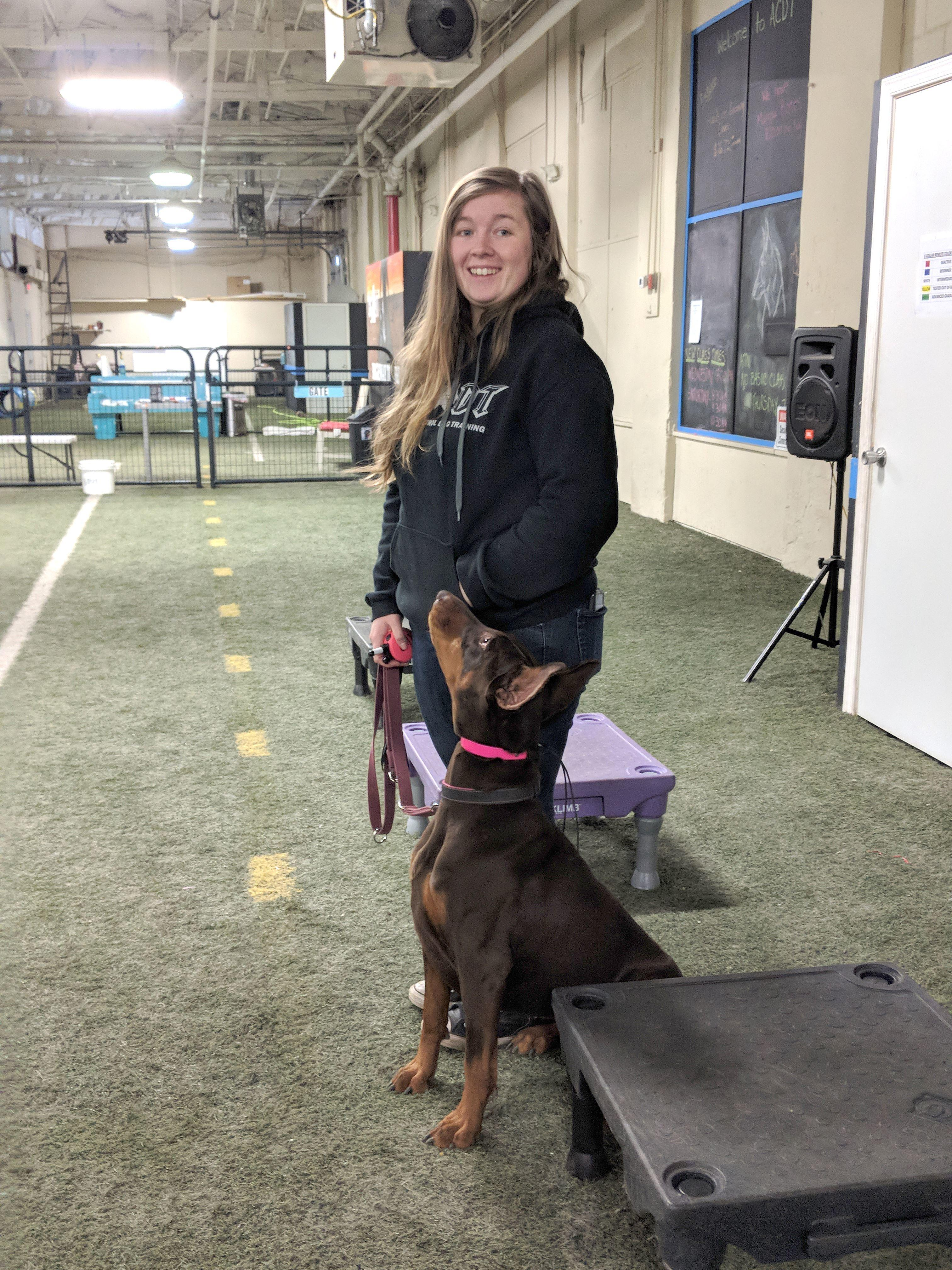 ACDT - Absolute Control Dog Training image 2