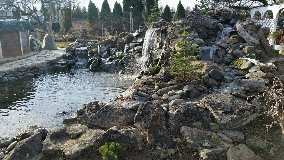 Brian's Garden & Landscaping image 0