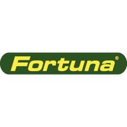 Fortuna Fahrzeugbau GmbH & Co. KG
