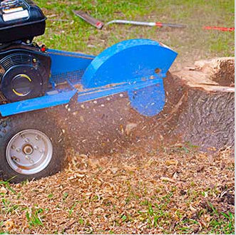 Stump Grinding. Leave your stump grinding to our locally-owned and operated company. Contact us for quality service today.