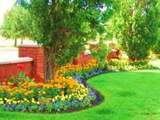 Outdoor Property Services LLC