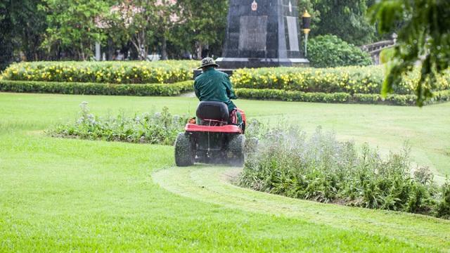 Gardening services witham essex