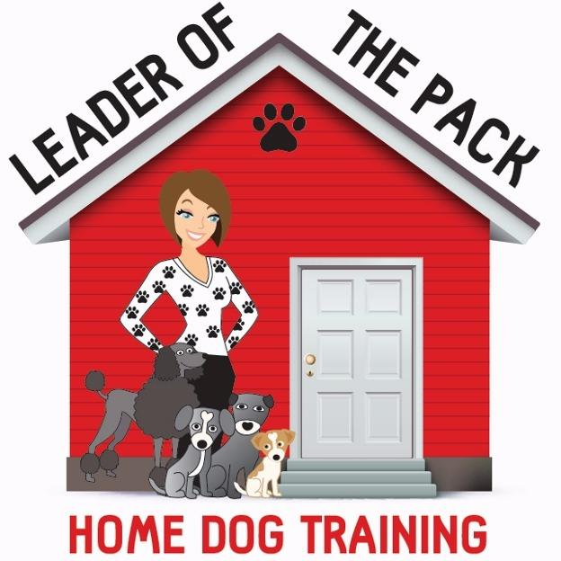 Leader of the Pack Home Dog Training image 5