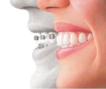 Saddlebrook Dental & Orthodontics image 5