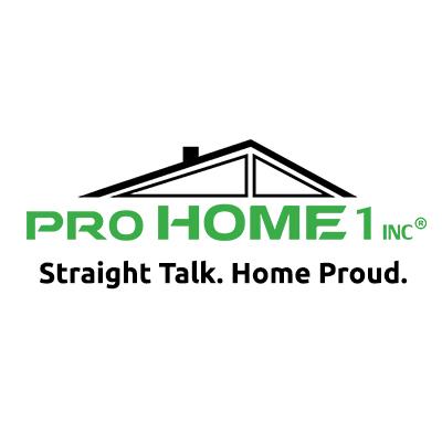 Pro Home 1, Inc
