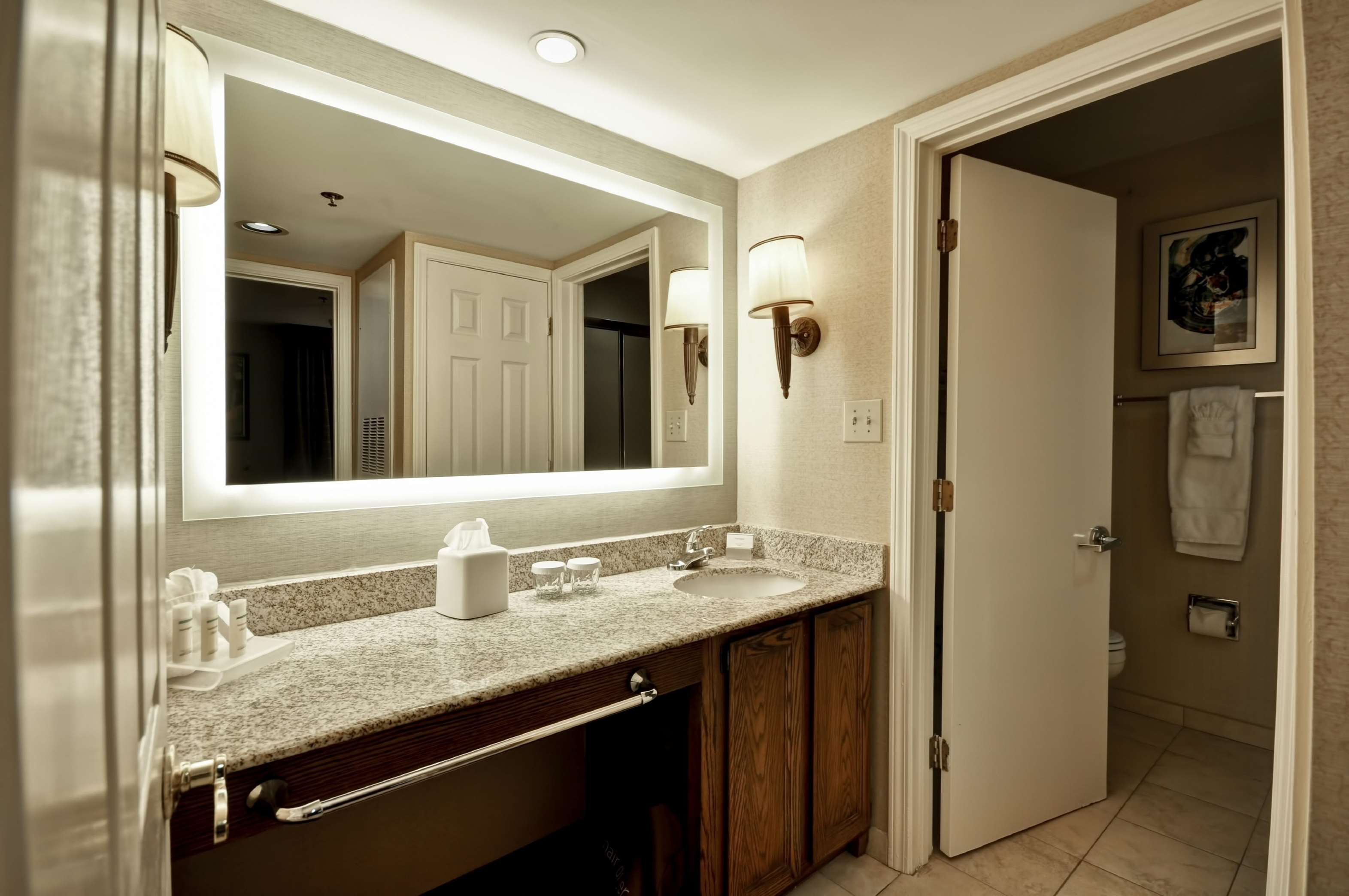 Homewood Suites by Hilton Atlanta-Galleria/Cumberland image 14