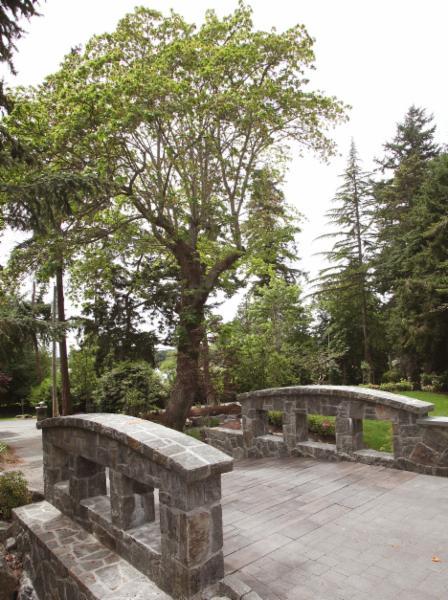 Acacia Landscape Inc in Victoria