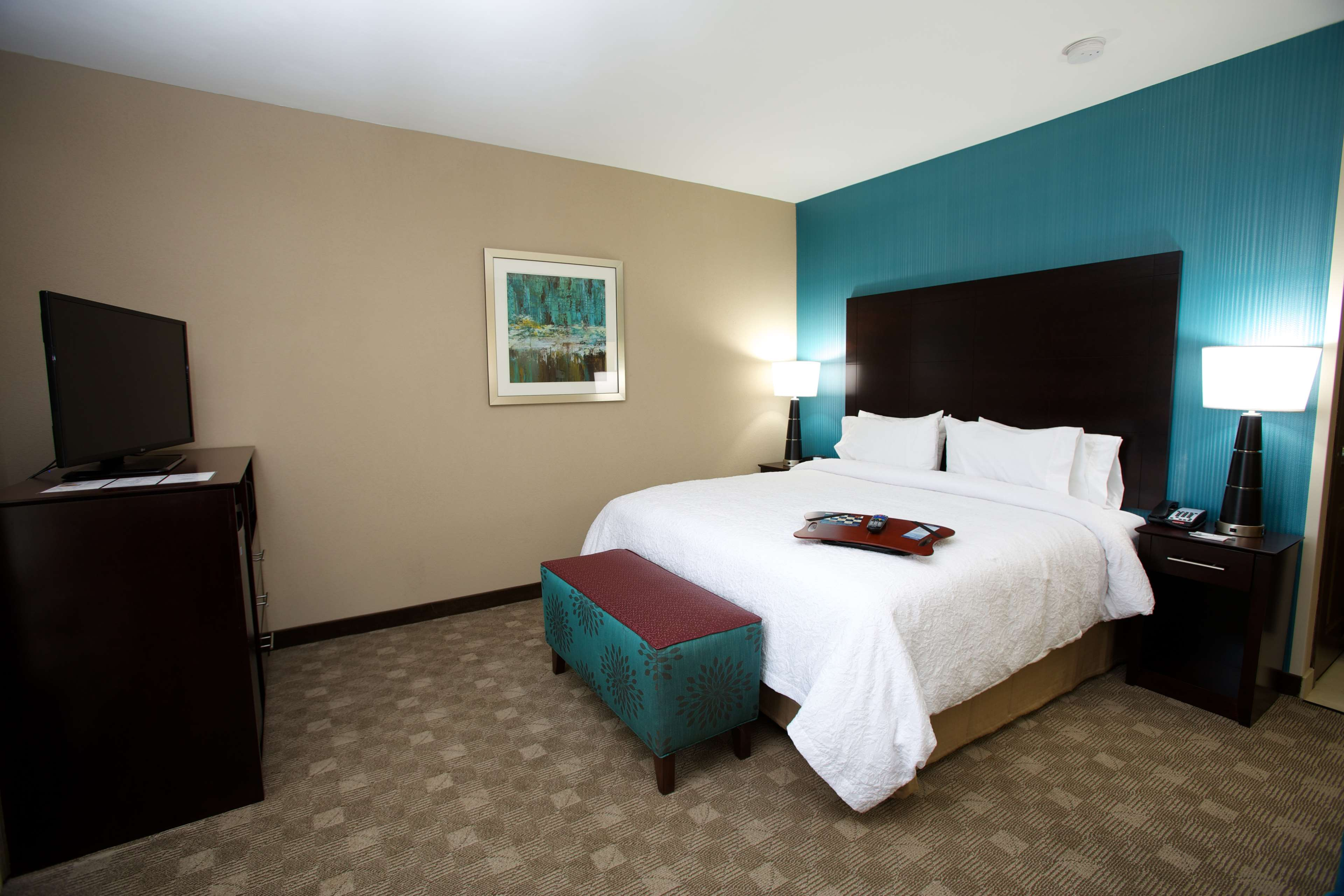 Hampton Inn & Suites Missouri City, TX image 32