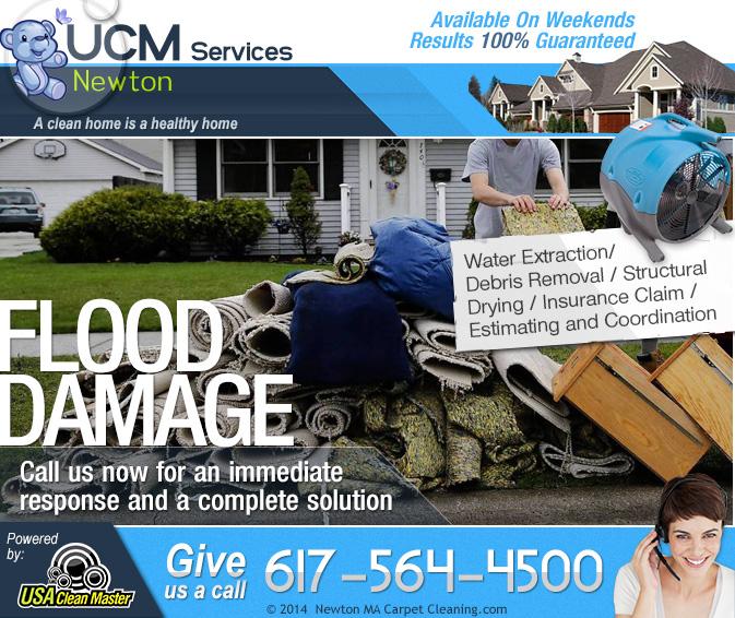 Ucm Services Newton In Brighton Ma 02135 Citysearch