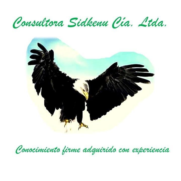 Consultora Sidkenu C.L.