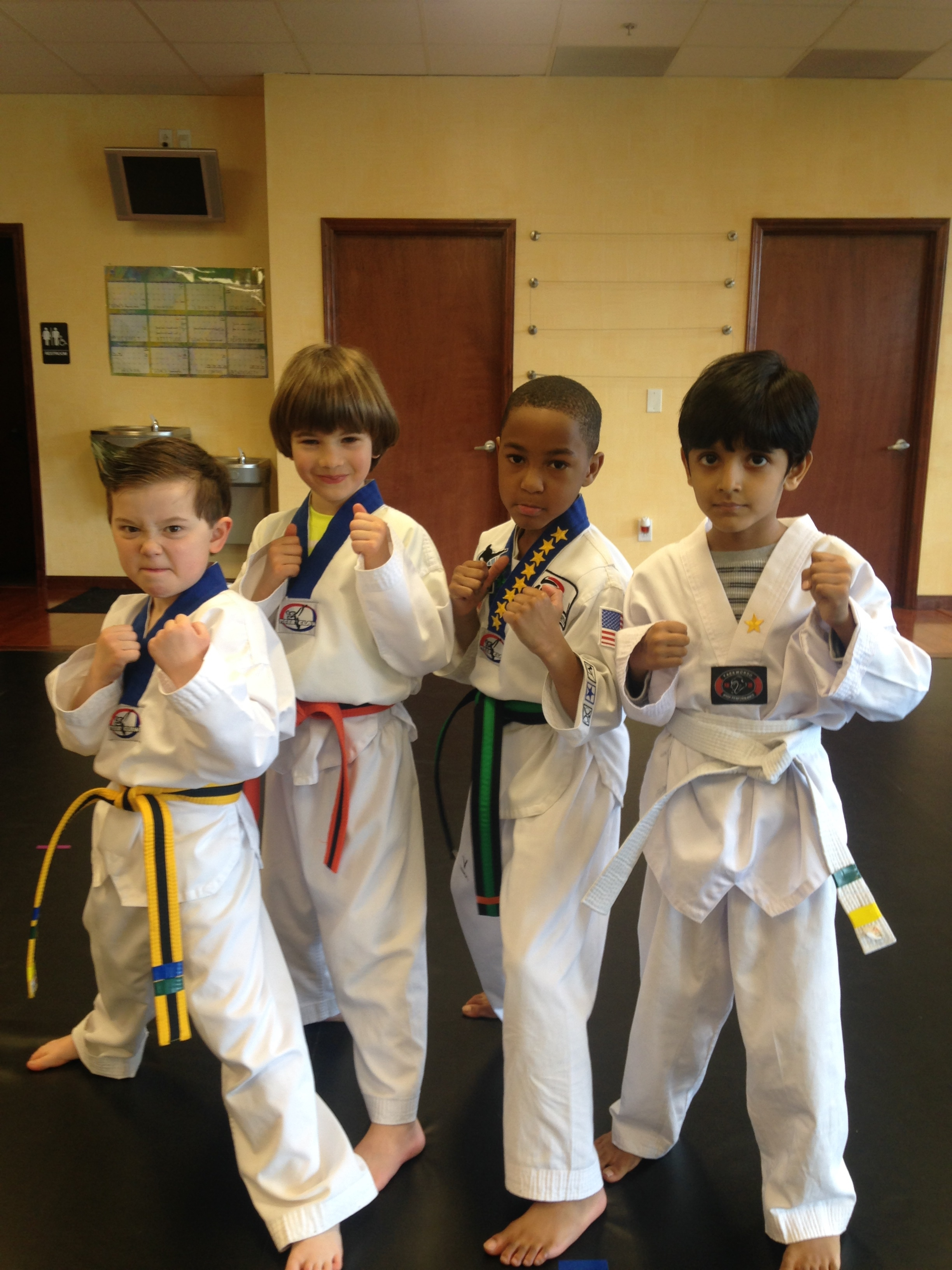 Martial Arts University image 6