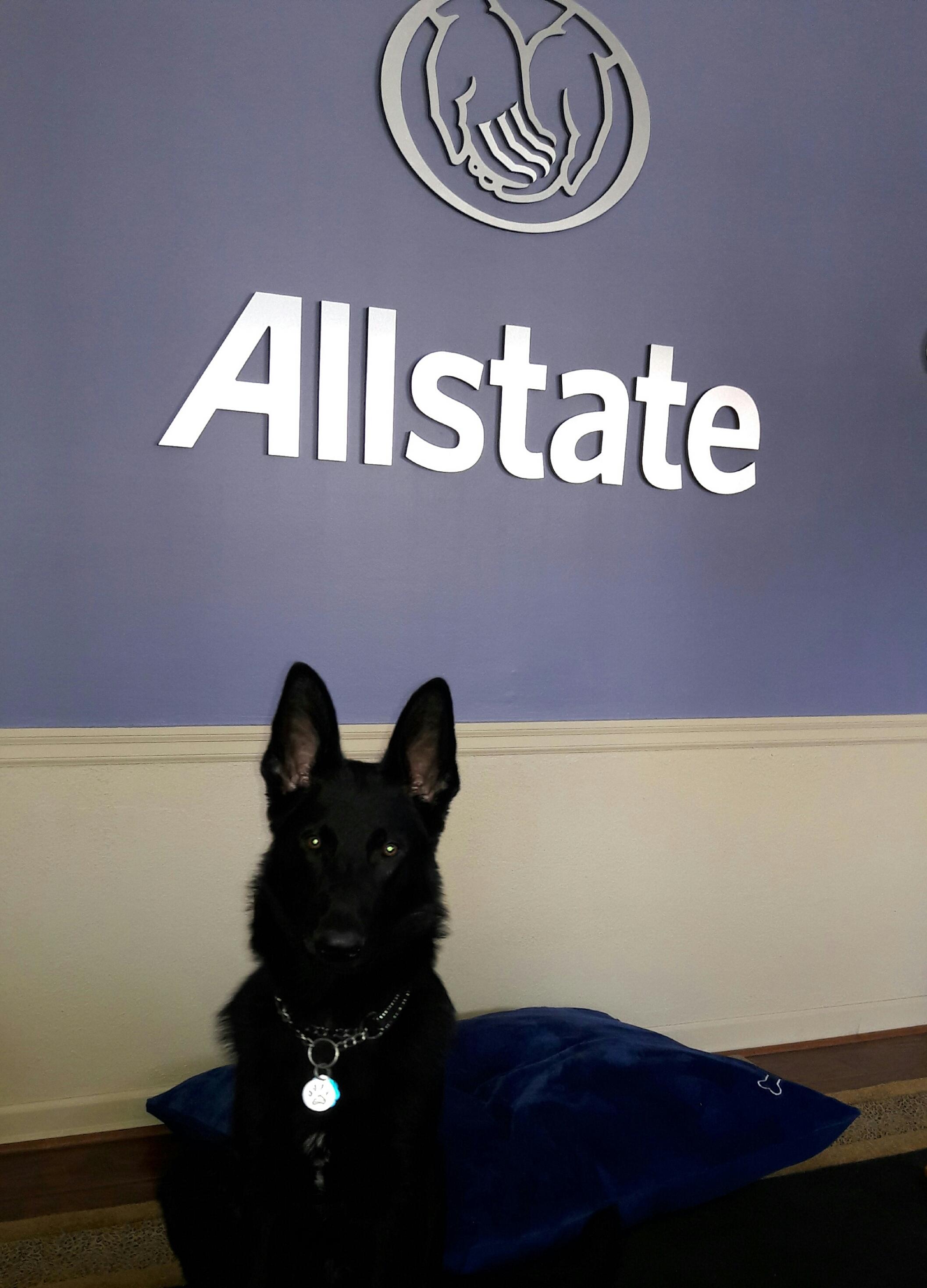Julia Miller: Allstate Insurance image 3