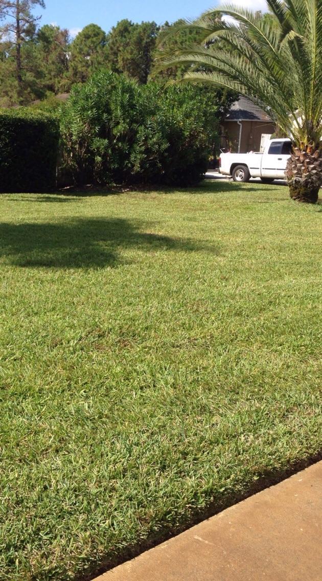 A Landmark Lawn