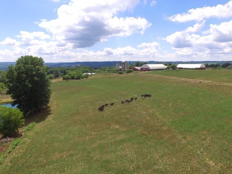 CBG Farm image 6
