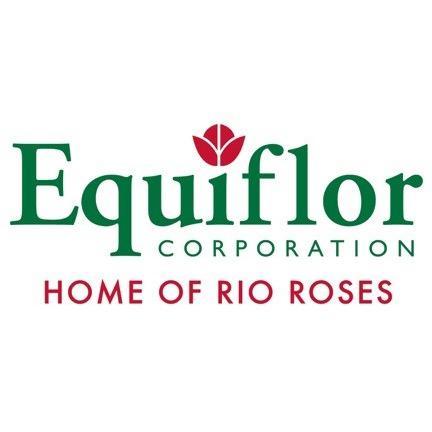 Equiflor/Rio Roses - Miami, FL - Florists