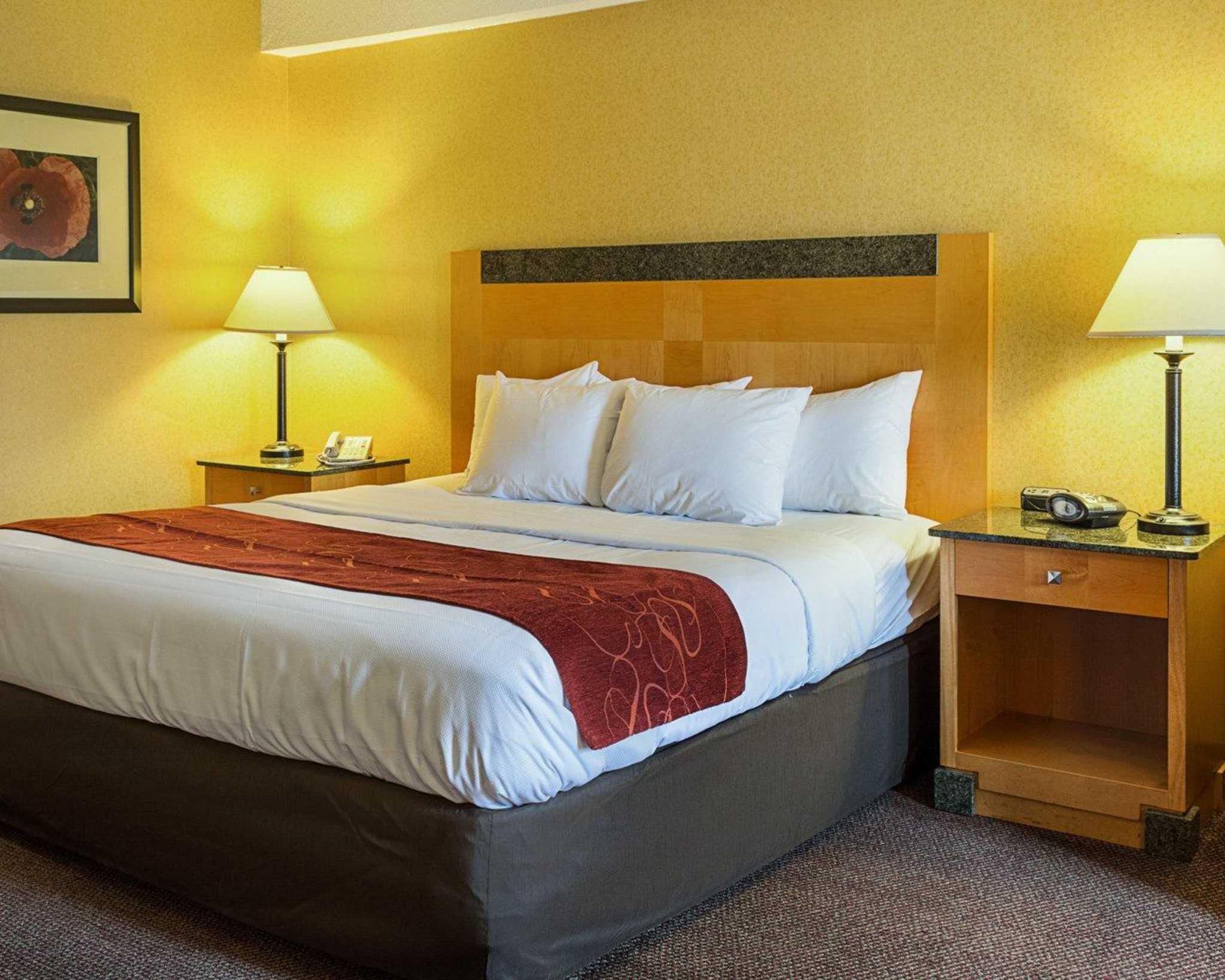 Comfort Suites Southpark image 18