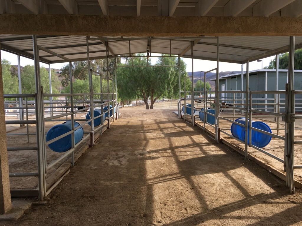 Lapeyre Ranch - Horse Boarding Facility image 2