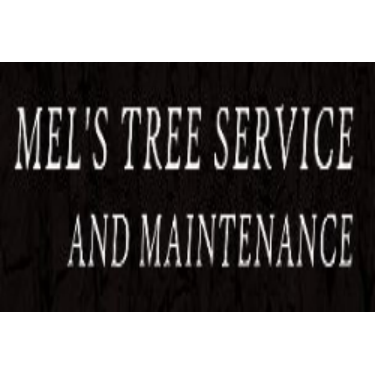 Mel Tree service image 6
