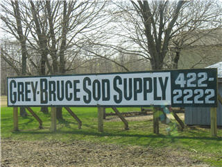 Grey Bruce Sod Supply Ltd in South Bruce Peninsula