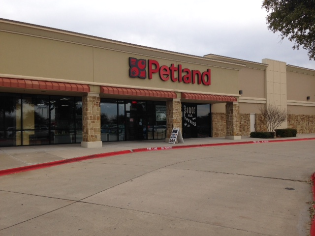 Petland Frisco image 0