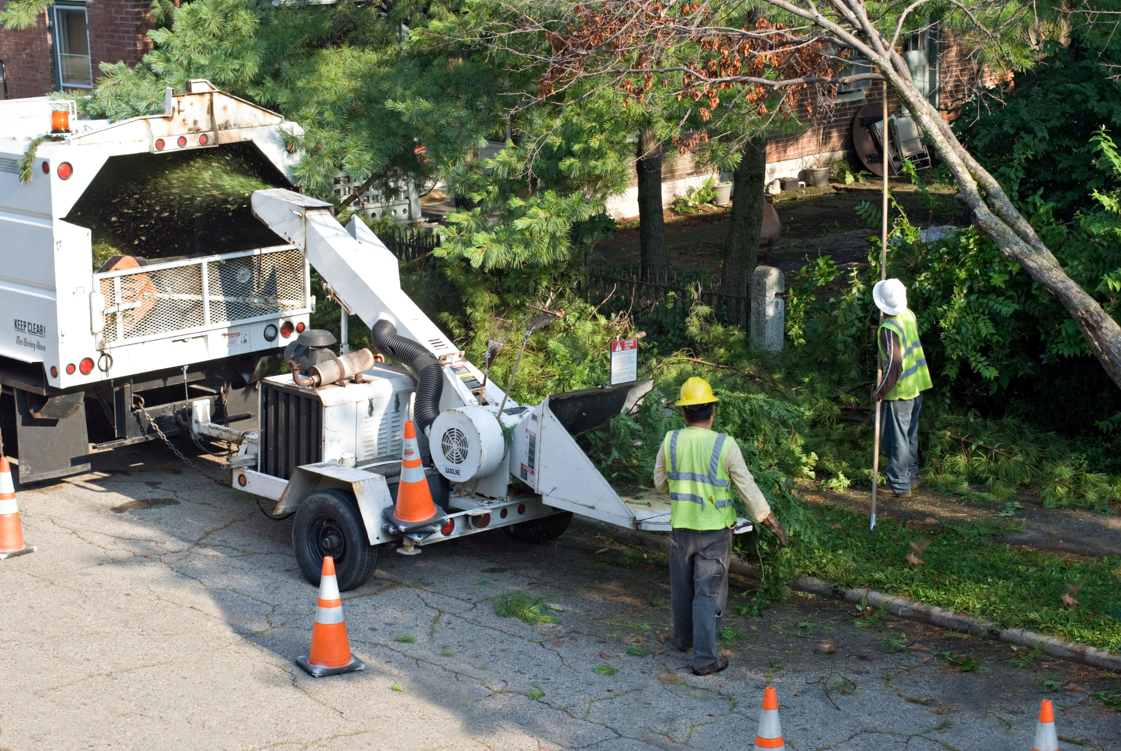 Coon Rapids Tree and Crane Service image 3