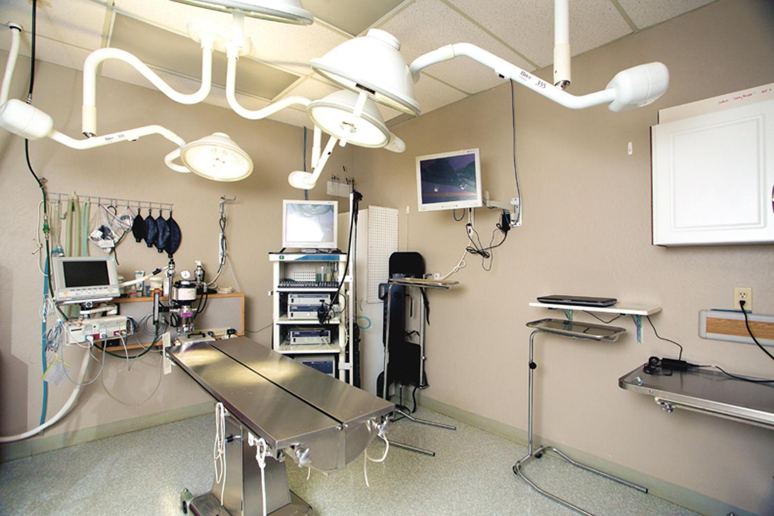 VCA Big Lake Animal Hospital image 4