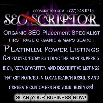 SEOScriptor Organic