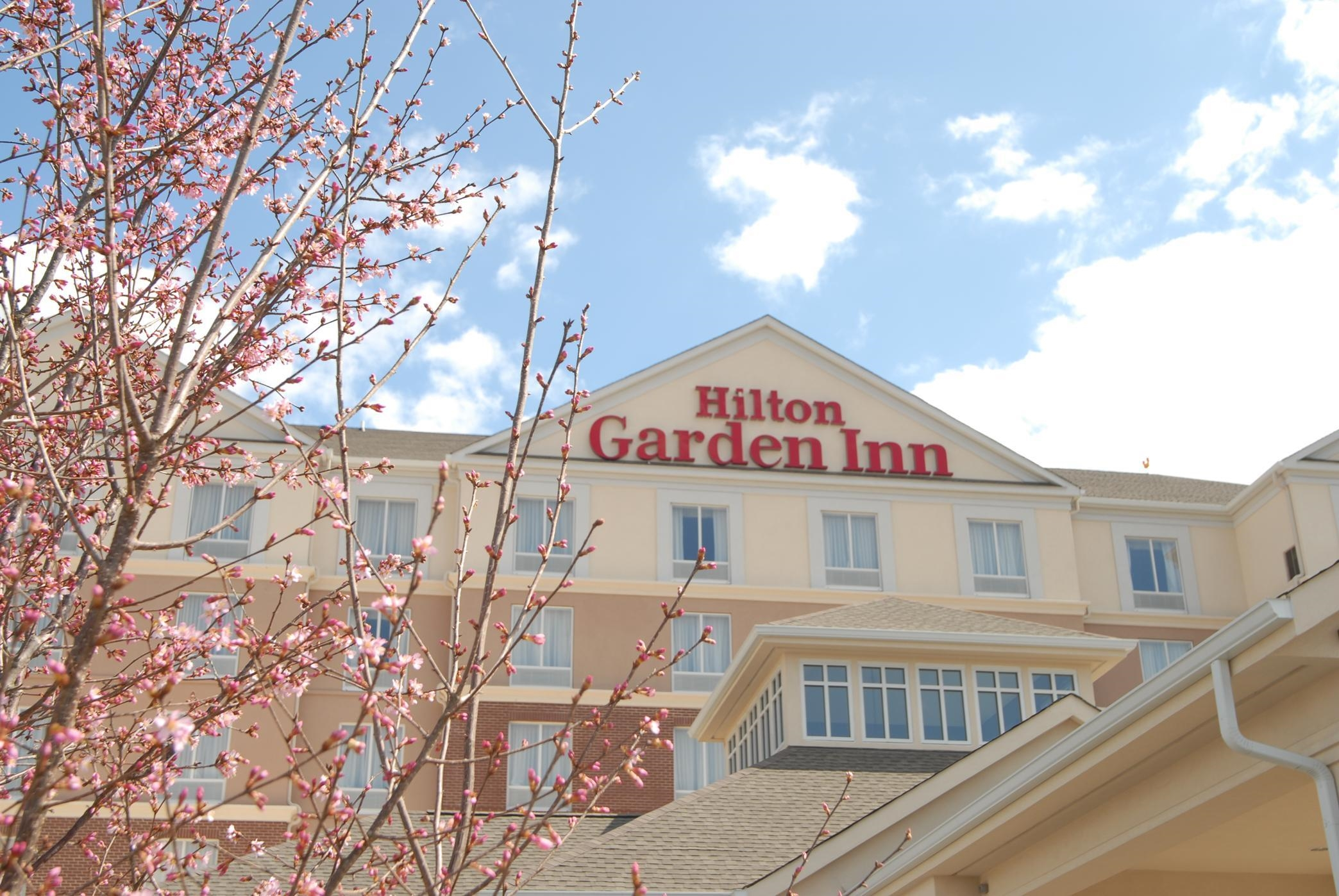 Hilton Garden Inn Charlotte/Concord image 0