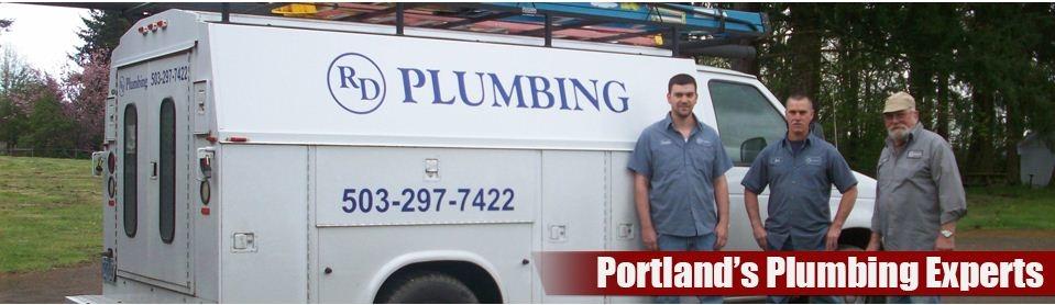 R D Plumbing Inc image 0