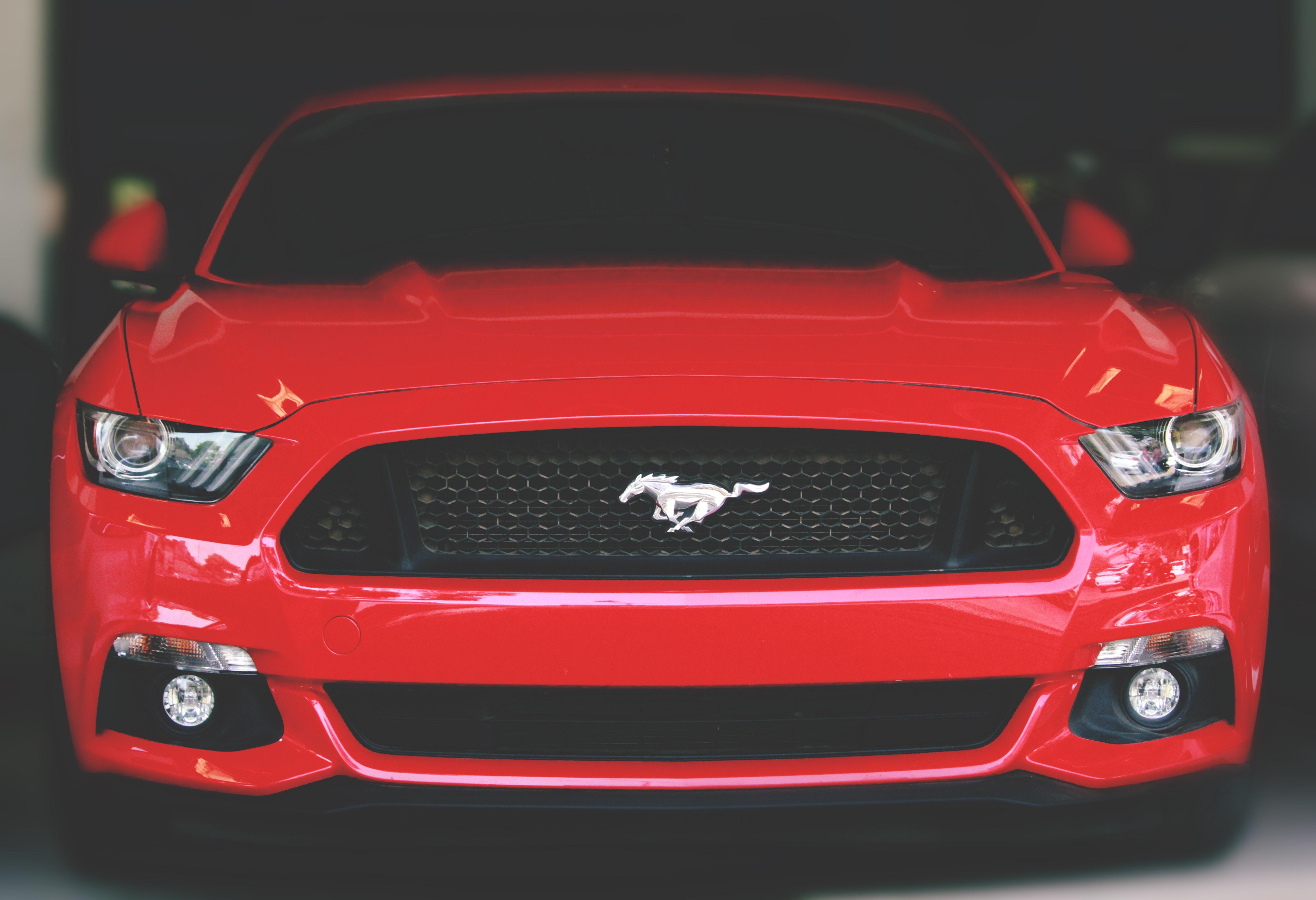 The Original Cash For Cars image 3