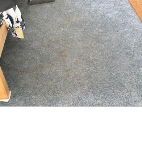 B/P Carpet & Upholstery Cleaning Inc image 4