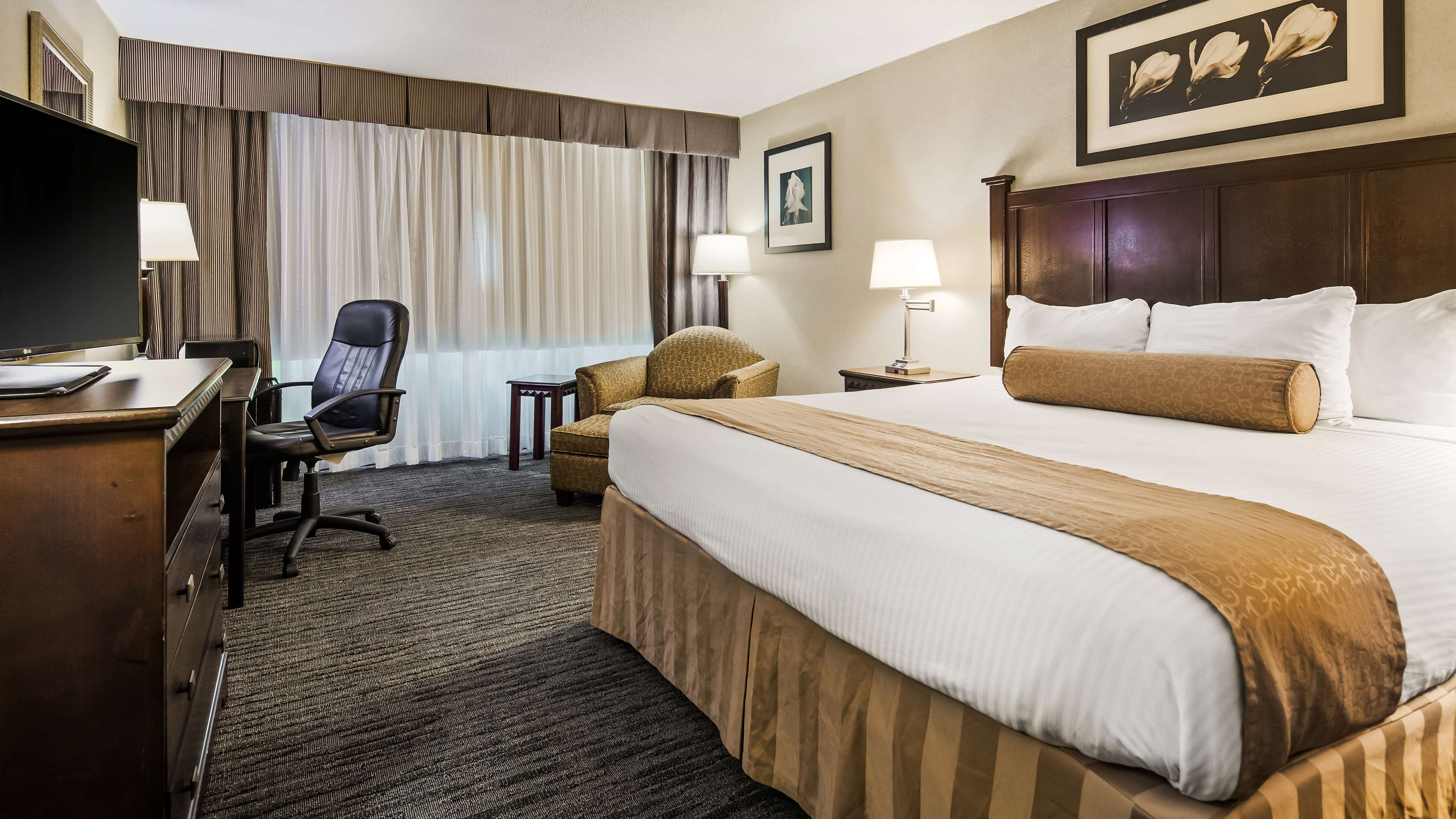 Best Western Plus Rockville Hotel & Suites image 9