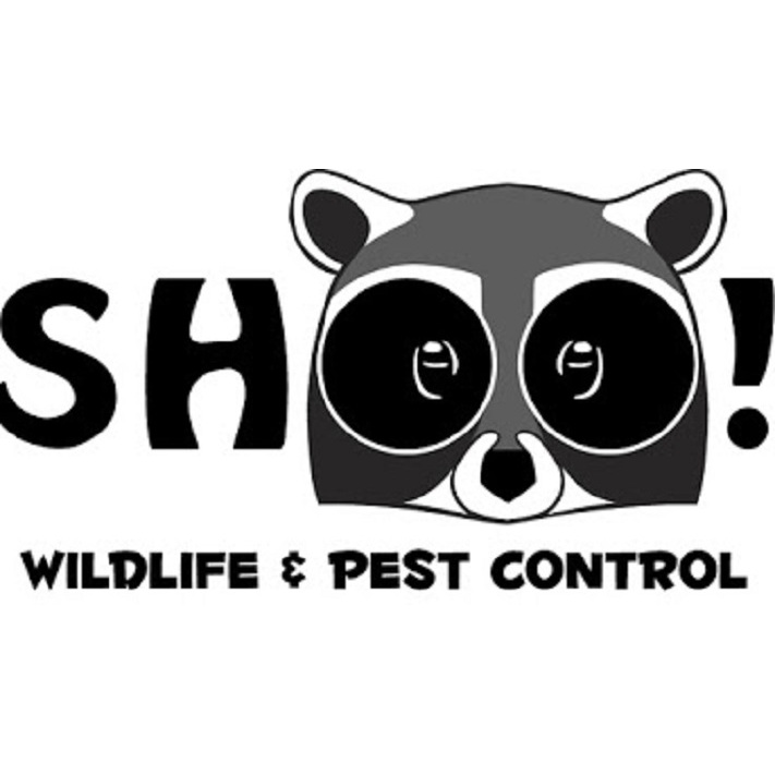 ShOO! Wildlife & Pest Control