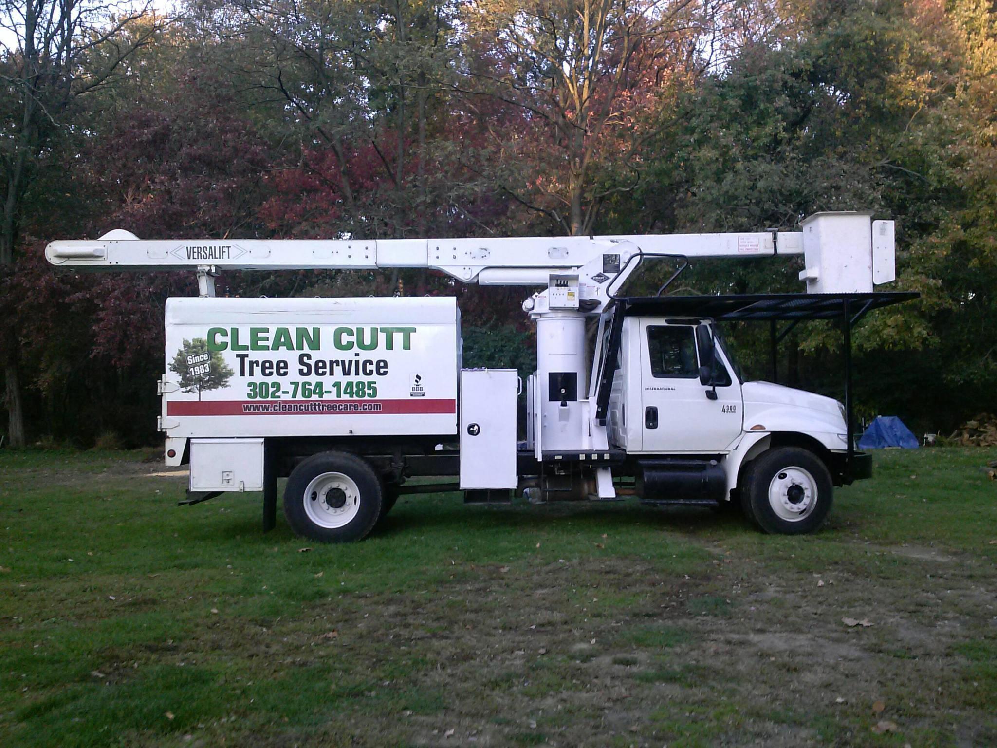 Clean Cutt Tree Service LLC image 1