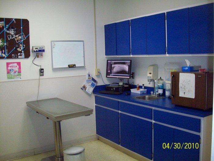 VCA Lewis Animal Hospital image 7