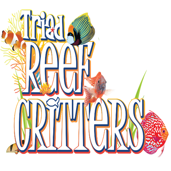 Triad Reef Critters