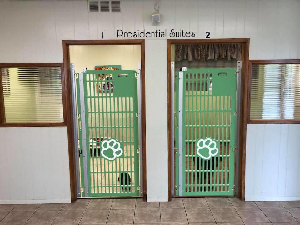 Jagger's Doggie Daycare, Dog Grooming, Training & Boarding image 11