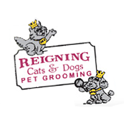 Reigning Cats & Dogs Pet Grooming