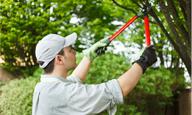 Bostwick Tree Service LLC image 0