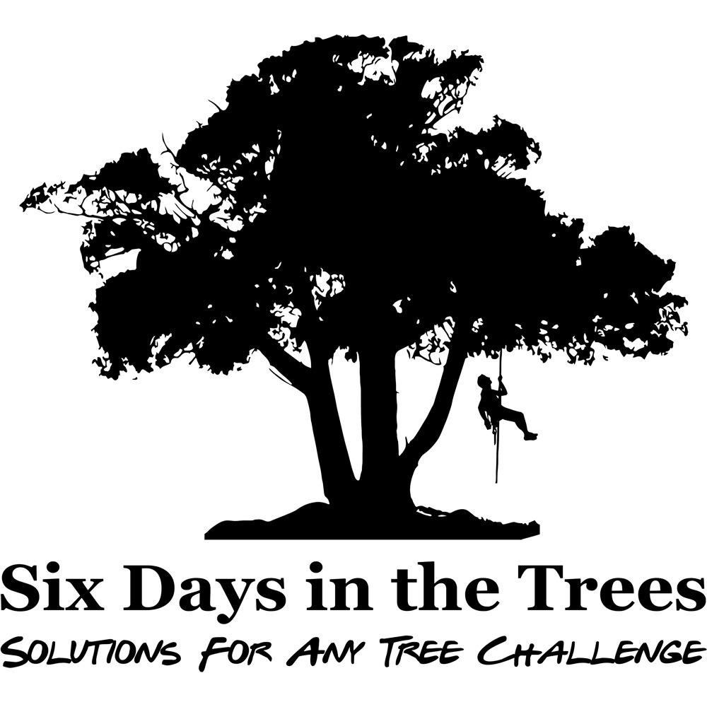 Six Days In The Trees, LLC