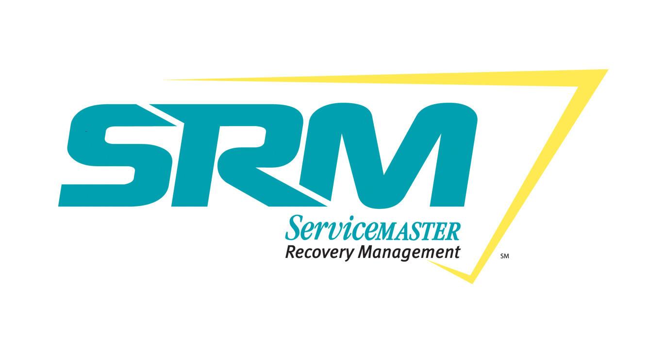 ServiceMaster DSI image 0