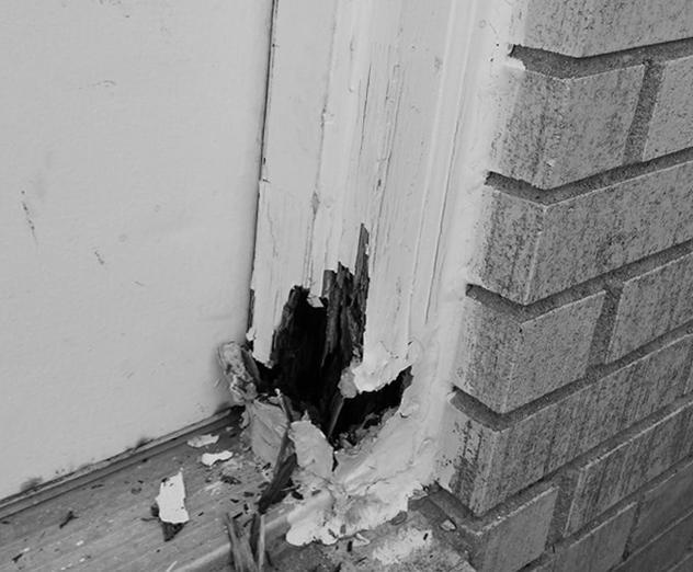 Aruba Home Repair and Improvement image 4