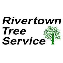 Rivertown Tree Service image 0