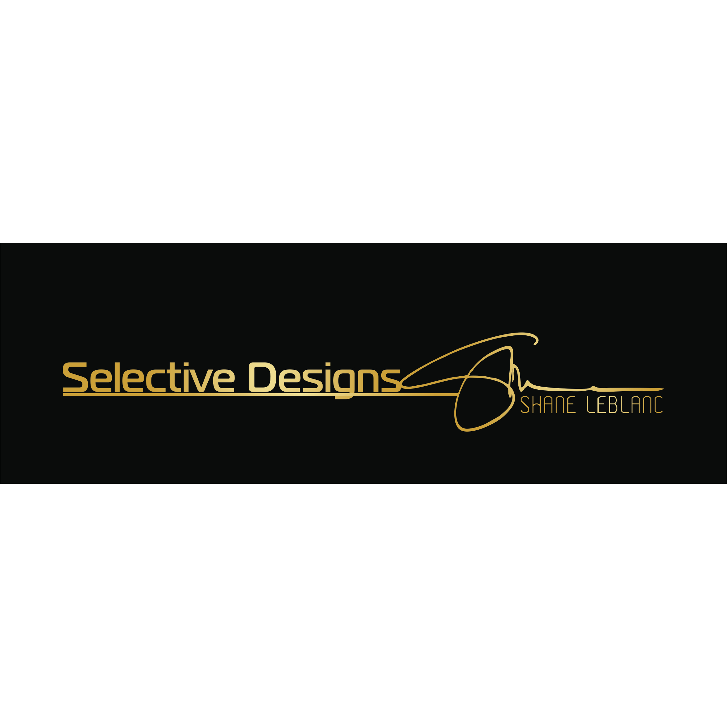 Selective Designs