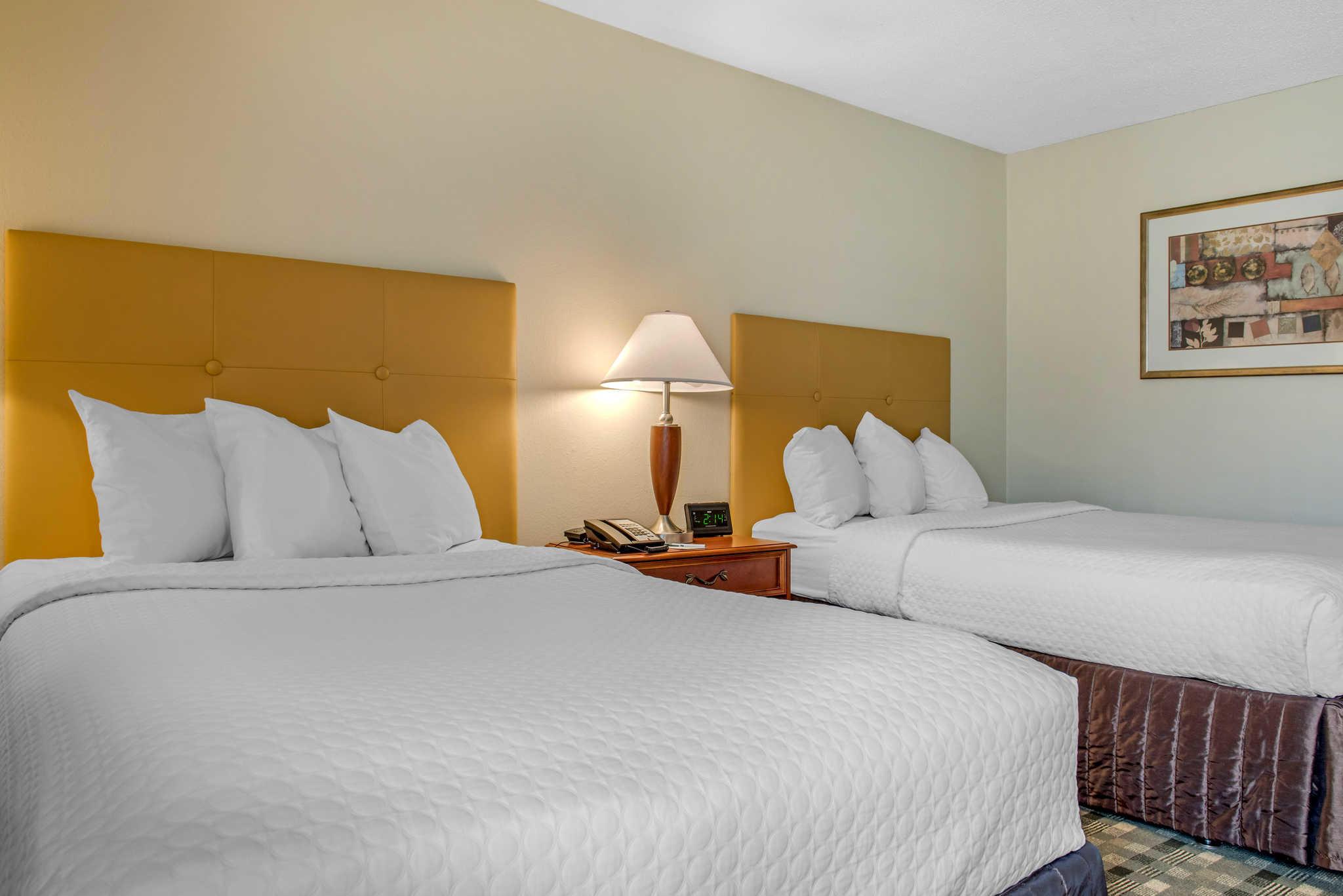 Quality Hotel - Cincinnati Blue Ash image 8